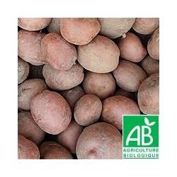 Pomme de terre DESIREE (vendu par 1kg)