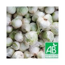 Oignon blanc demi-sec [vendu par 250g] - (MPP)