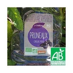 Pruneaux [sachet de 500g]