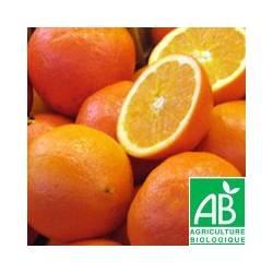 Orange Valencia [vendu par 1kg]